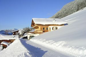 alpbach 684 winter b.jpg